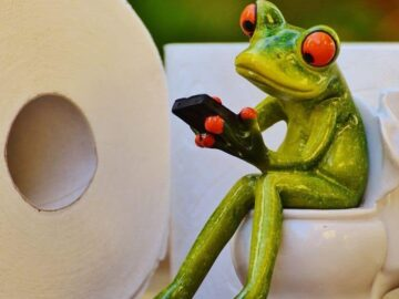 frog in the toilet